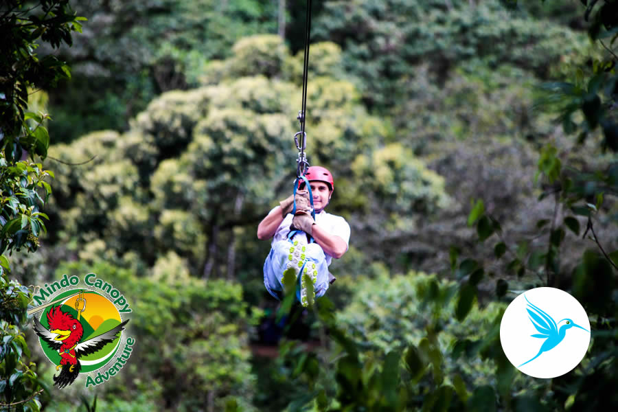 Canopy Portal Mindo & Canopy Fotos Tours en Mindo Ecuador informacion servicios hostales ...